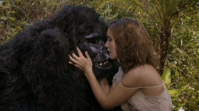 gorillapresskit_01